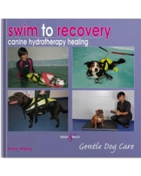swim_to_recovery